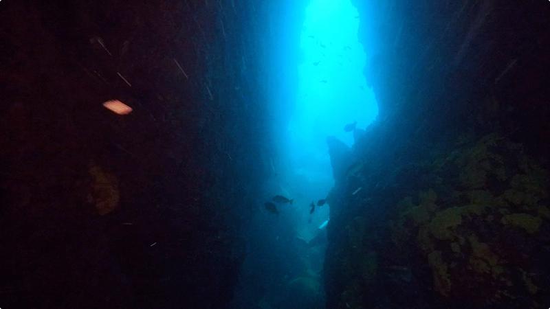 縦長のケイブ@Shark Cave(ミャンマークルーズ)