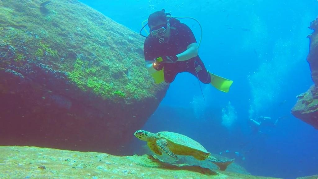 ウミガメと戯れる@ディープシックス/シミラン諸島No.7